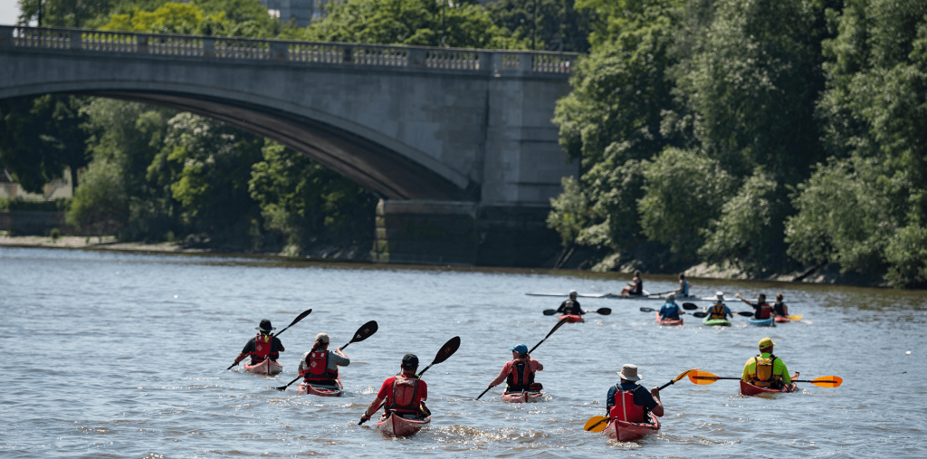 Kayakers on the tidal River Thames